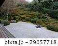 方丈から見える枯山水庭園 29057718