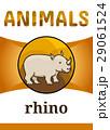Printable animal flash card 29061524
