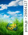 地球 草 保全の写真 29064127