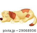 わんこ 犬 こいぬのイラスト 29068936