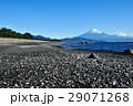 静岡県静岡市 三保の松原からの富士山 29071268