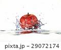 リンゴ しずく 滴のイラスト 29072174