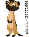 Cute meerkat cartoon 29072656