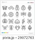 昆虫 シルエット 29072763