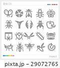 昆虫 シルエット 29072765