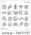 昆虫 シルエット 29072767