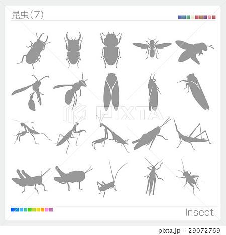 昆虫 シルエット 29072769