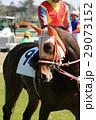 競馬 騎手 馬の写真 29073152