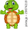 かめ カメ 亀のイラスト 29074219
