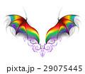Wings of rainbow dragon 29075445