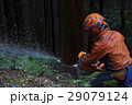 林業の男性 29079124