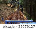 林業従事者 林業 山の写真 29079127