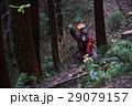 林業の男性 29079157