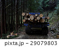 林業 伐採 山の写真 29079803