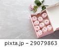 マシュマロ ゼファー BOXの写真 29079863