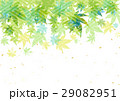 新緑 青もみじ 葉のイラスト 29082951