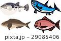 河豚 鮭 ほっけのイラスト 29085406