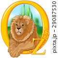 ライオン 獅子 動物のイラスト 29087530
