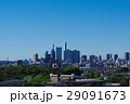さいたま新都心と大宮公園の緑 29091673
