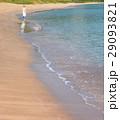 波打ち際と女性 29093821