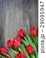 Red tulips on wooden background with space for 29095947