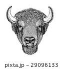 Wild Bison Large mammal Hand drawn illustration 29096133