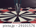 Darts 29101576