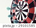 Darts 29101585