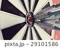 Darts 29101586