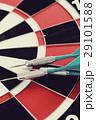 Darts 29101588