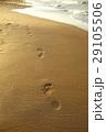 footsteps 29105506