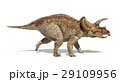Triceratops dinosaur photorealistic and scientifically correct representation. Side view. 29109956