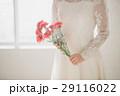 カーネーション 花嫁 新婦の写真 29116022