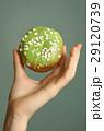 ドーナッツ ドーナツ シュガーの写真 29120739