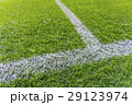 White stripe on the green soccer field from top 29123974