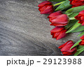 Red tulips on wooden background with space for 29123988