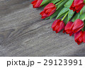 Red tulips on wooden background with space for 29123991