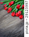 Red tulips on wooden background with space for 29123997