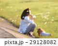 女性と犬の抽象的なイメージ 29128082