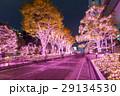 東京都 日本 照明の写真 29134530