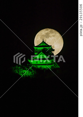 緑色にライトアップされた岐阜城 29135506