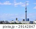 東京スカイツリー 東京 街並みの写真 29142847