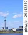 東京スカイツリー 東京 街並みの写真 29142850