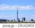 東京スカイツリー 東京 街並みの写真 29142859