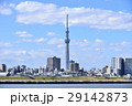 東京 都市風景 東京スカイツリー 29142873