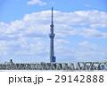 東京スカイツリー スカイツリー ランドマークの写真 29142888