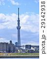 東京スカイツリー 東京 街並みの写真 29142938