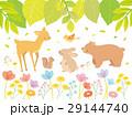 植物 動物 春のイラスト 29144740