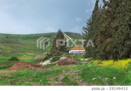 House with an orange roof on a green meadow 29146413