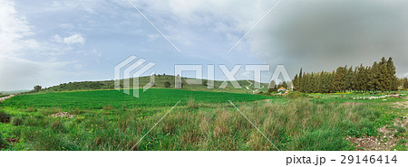 Panorama field against a background of clouds 29146414